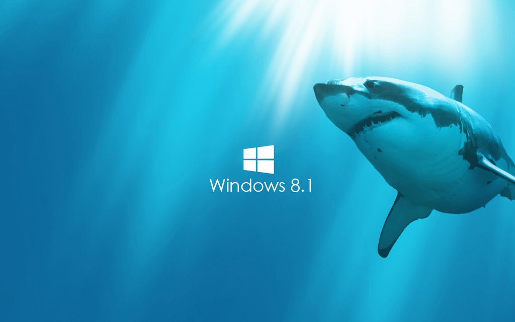 Windows 8.1 Wallpaper shark