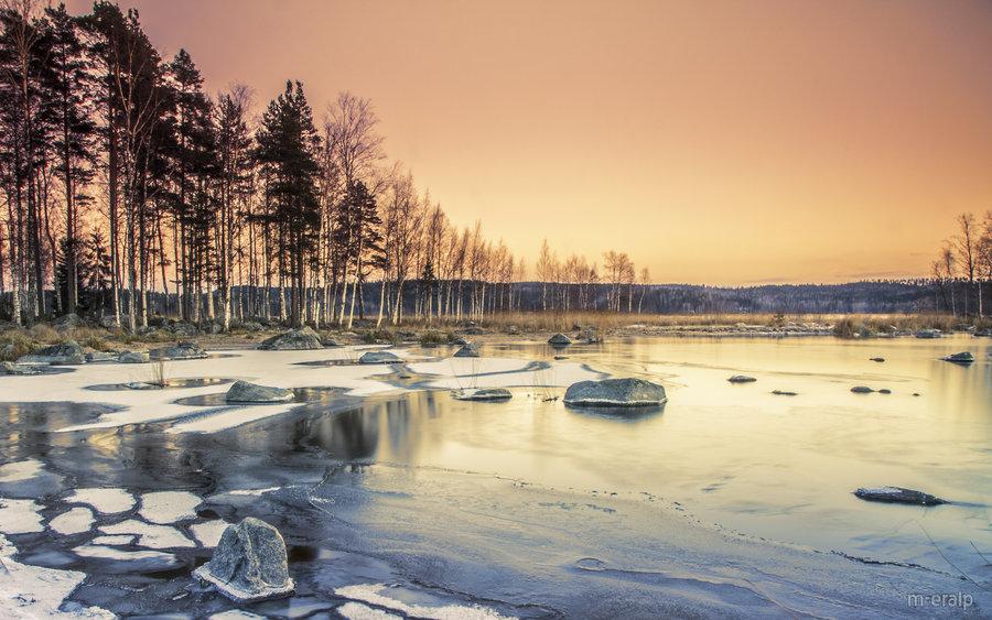frost_by_m_eralp-d5msh6f