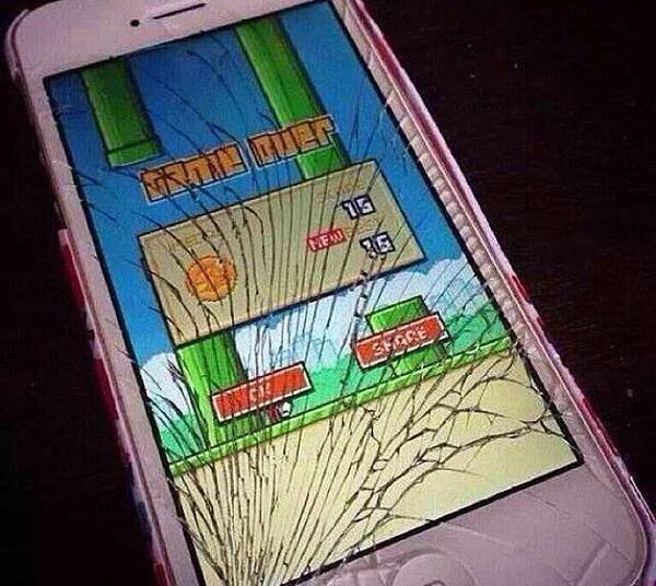 Crazy with Flappy Bird